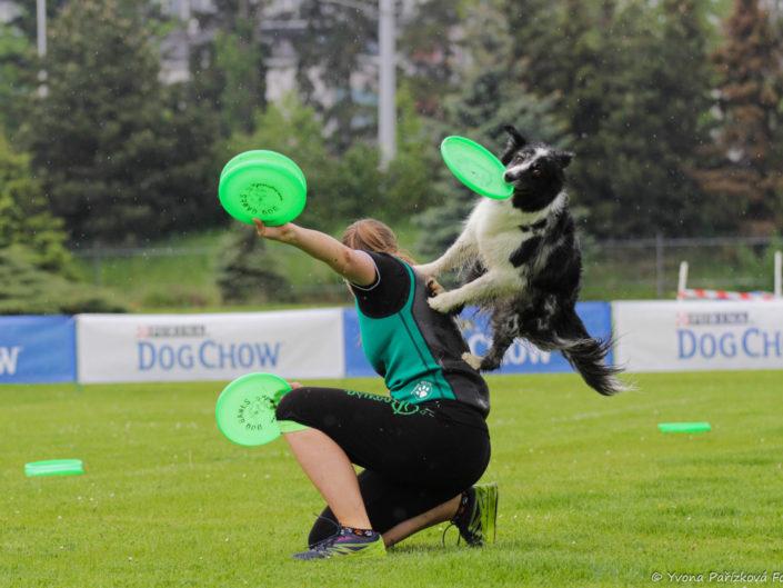 Psí sporty