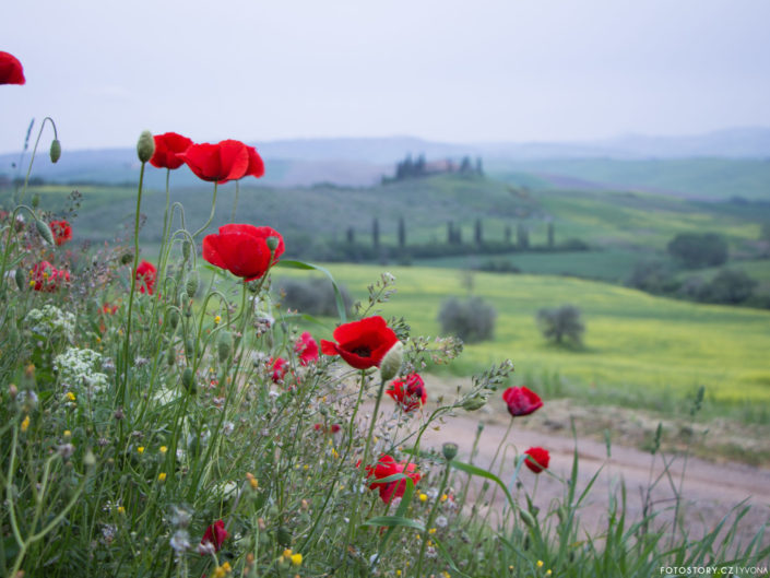 Itálie - Toskánsko jaro